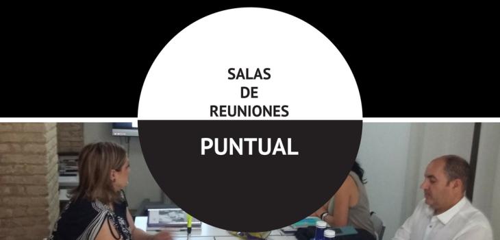 SALA DE REUNIONES PUNTUAL