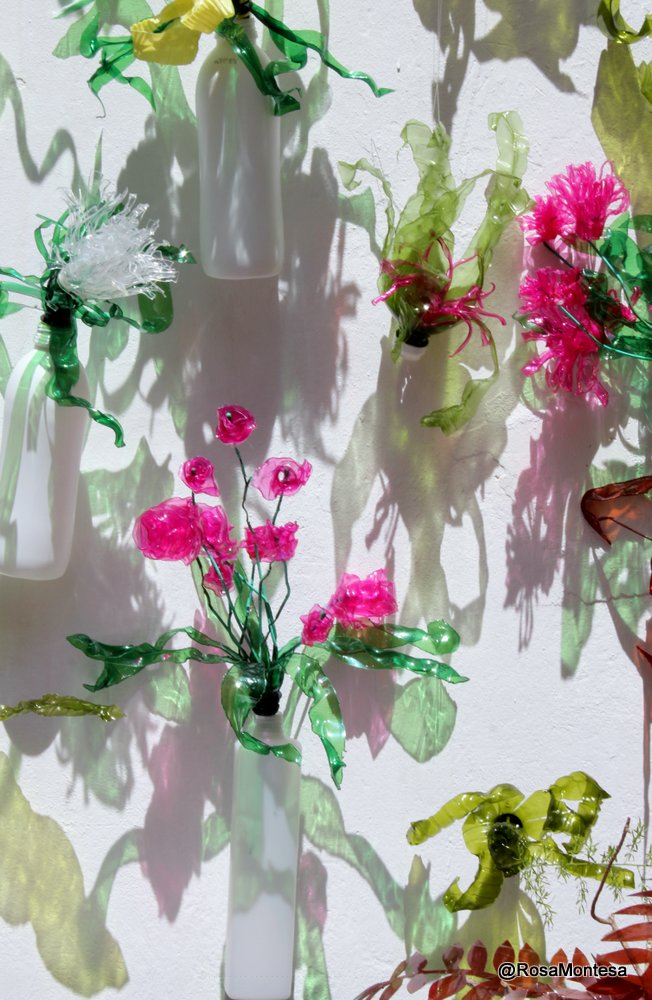 Plantas, jardin con botellas de plástico